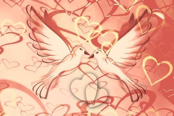 heart-1137268_960_720